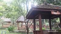Tersedia juga area outdoor yang dilengkapi dengan saung