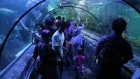 Terowongan bawah air yang menjadi favorit pengunjung