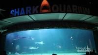 Akuarium hiu yang menjadi salah satu favorit pengunjung