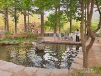 Keluarga yang menghabiskan waktu bersama di tepi kolam yang tersebar di Pulau Nami.