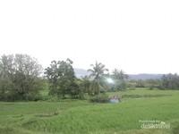 Suasana di sekitar Situs Pagaruyung