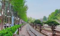 Rel kereta untuk wisata di Pulau Nami.