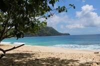 Jika lelah pengunjung dapat beristirahat di bawah pohon yang terdapat di sepanjang pantai , ada juga pondok-pondok dengan bangku-bangku kayu.