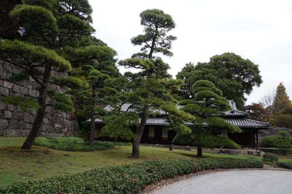 Salah satu guardhouse untuk melindungi Edo Castle dikelilingi pepohonan hijau