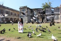 Burung merpati yang terdapat di dalam benteng menemani pengunjung berfoto.