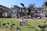 Keberadaan burung merpati di dalam benteng menciptakan suasana lain saat berfoto di sini.