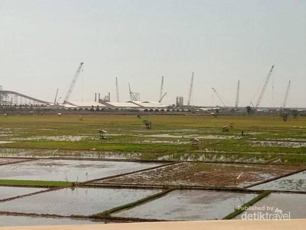 Di ruas tol Batang,  terlihat crane di tepi laut, berpadu dengan hijaunya persawahan