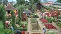 Kebun Begonia selalu dipadati pengunjung saat musim liburan