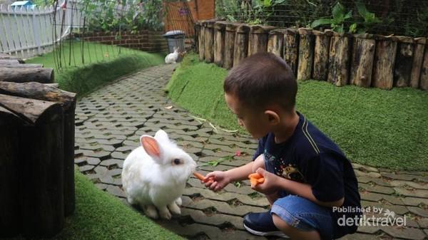 Terdapat aneka permainan anak di Orchid Forest, seperti Rabbit Forest dan Orchid Castle