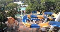 Terdapat berbagai jenis kolam renang dan seluncuran di Atlantis.