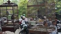 Beragam jenis burung ditawarkan di pasar ini. (Foto: Aryasuta)