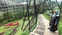 Di tempat ini terdapat konservasi berbagai anggrek langka di Orchid House