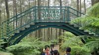 Jangan lewatkan kesempatan untuk mencoba Wood Bridge untuk menyusuri hutan ini
