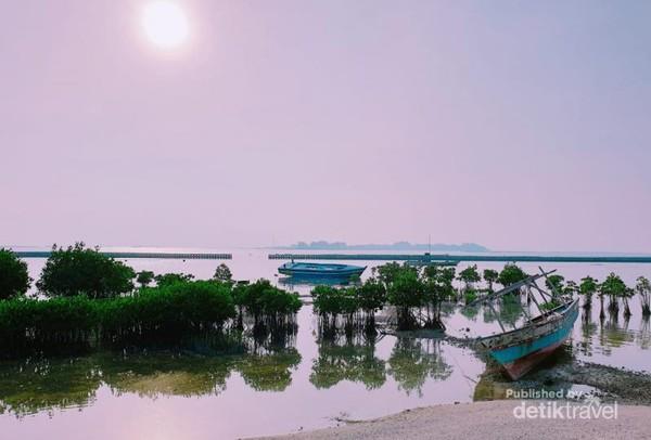 Indahnya pemandangan bakau berlatarkan matahari terbenam di Pulau Pramuka.