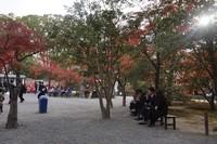 Taman kecil untuk beristirahat dan menikmati kudapan yang bisa dibeli dekat pintu keluar