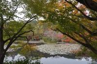Taman dengan kolam besar yang juga bisa dinikmati di kuil ini