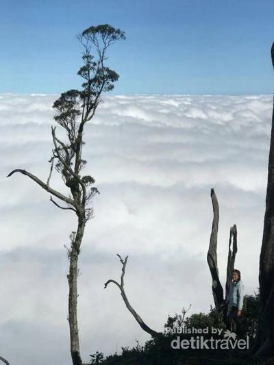 Lihat Jauh ke Timur, Ini Wisata Hits di Timor Tengah Selatan