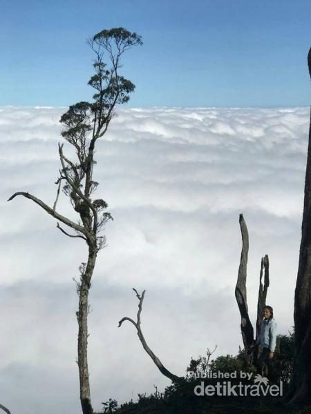 Lihat Jauh Ke Timur Ini Wisata Hits Di Timor Tengah Selatan