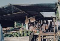 Pedagang buah di tepian Pantai Glagah