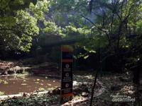 Forestwalk Babakan Siliwangi yang memiliki panjang kurang lebih dua kilometer dengan ketinggian sekitar 3-4 meter