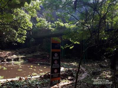 Minggu Pagi di Bandung: Jelajah Babakan Siliwangi