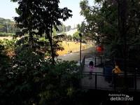Lapangan Sabuga yang berada di kawasan Sarana Olah raga (Saraga) ITB terlihat dari atas Forestwalk Babakan Siliwangi