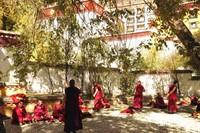suasana di halaman belakang biara
