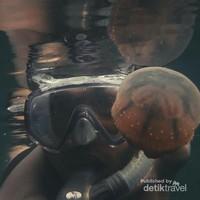 Snorkeling di Danau Ubur - Ubur