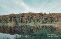 Landscape  Danau Tambing