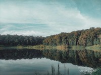 Danau yang asri nan hijau.