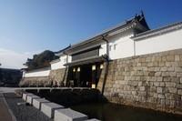 Istana ini dibangun untuk tempat tinggal Tokugawa Ieyasu