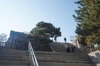 Nijo Castle memiliki tiga bagian, Honmaru (lingkaran utama pertahanan), Ninomaru (lingkaran kedua pertahanan) dan taman yang mengelilingi kedua pertahanan tersebut