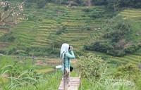 Berburu foto pemandangan alam lereng Gunung Lawu.