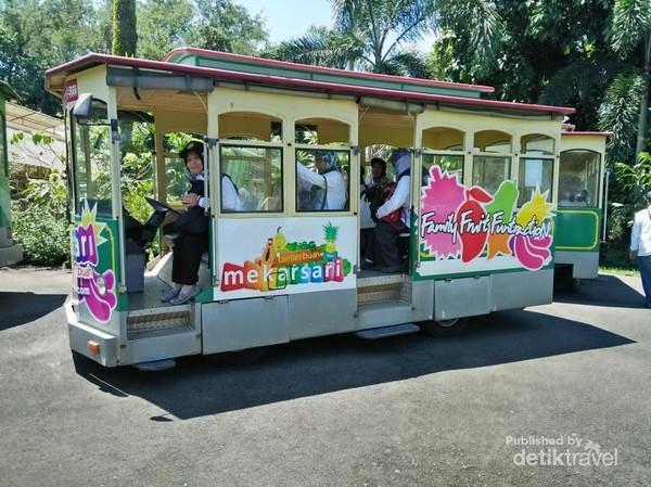 Mobil wisata untuk pengunjung berkeliling