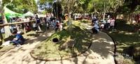Terkenal karena aneka wahana permainan menarik, ternyata ada juga taman kelinci yang luas di Floating Market Lembang