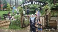 Rabbit Forest terletak di kawasan Orchid Forest Cikole