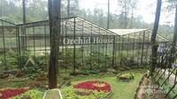 Aneka anggrek langka bisa ditemui di Orchid House