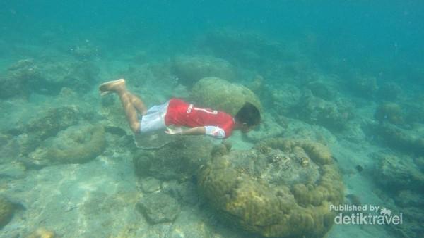 Menyelam menikmati terumbu karang di salah satu spot snorkeling.