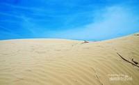 Gurun di bibir Pantai Oetune ini memiliki pasir yang sangat halus