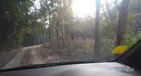 Salah satu akses jalan ke kampung