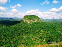 Bukit ini dikelilingi oleh pepohon hijau sehingga tempat ini terasa begitu asri dan indah.