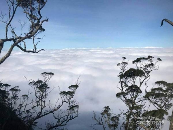 Indahnya pemandangan dari puncak Mutis. (Esti Tanaem)