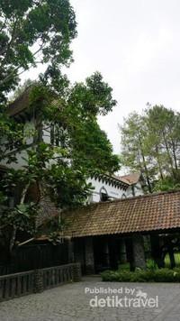 Restoran dikelilingi pepohonan sehingga terasa sejuk dan asri