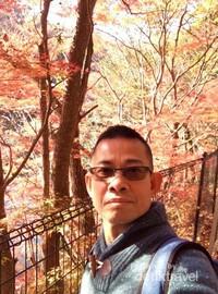Berselfie ria dengan latar belakang pohon maple