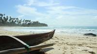 Pantai pasir tinggi di Simeulue