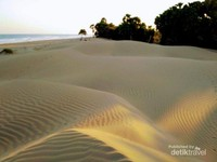 Gurun Sahara mini dengan hamparan pasir halus bisa menjadi pilihan bagi kalian yang mengunjungi kabupaten Timor Tengah Selatan.