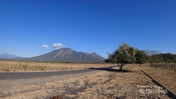 Taman Nasional Baluran memiliki luas mencapai 25.000 Ha. Jadi, SANGAT TIDAK DISARANKAN berjalan kaki menjelajahi kawasan ini.