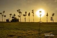 Selain pantainya yang indah, Pantai Kuri Caddi juga menjadi lokasi camping terbaik di Kabupaten Maros. Kenapa terbaik, karena ini satu-satunya wisata pantai yang ada di Maros yang lokasinya juga cukup dekat dengan Bandara Sultan Hasanuddin. Untuk biaya tiket tidak usah khawatir, karena pantai ini tidak memungut biaya sepeserpun asal pengunjung bisa menjaga kebersihan dengan tidak membuang sampahnya di sembarang tempat
