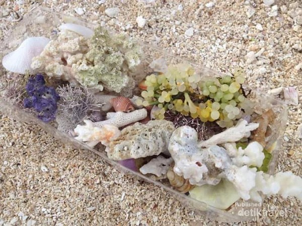 Kerang-kerang cantik di Pantai Cukoh