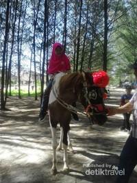 Pelan-pelan naik kudanya